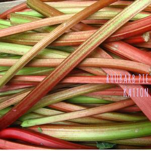 Rhubarb Pie cover art