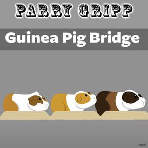 Guinea Pig Bridge