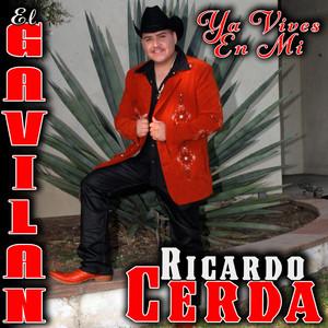 Ricardo Cerda El Gavilan