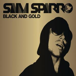 Black & Gold (Radio Edit)
