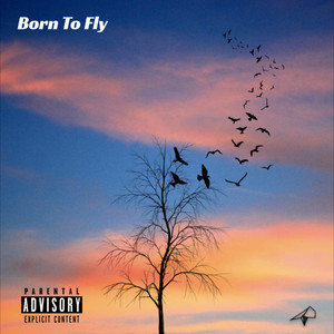 Born to Fly album