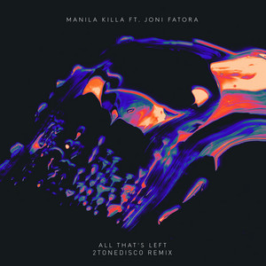 All That's Left (feat. Joni Fatora) [2ToneDisco Remix]