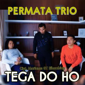Tega Do Ho