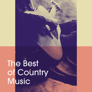 The Best of Country Music album