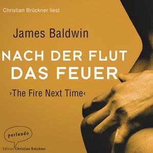 Nach der Flut das Feuer (Ungekürzte Lesung) Audiobook
