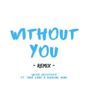 Without You (Remix)