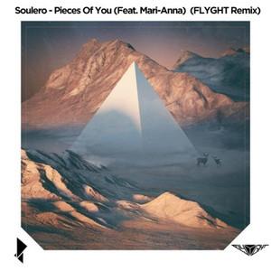 Pieces Of You (FLYGHT Remix) [feat. Mari - Anna]