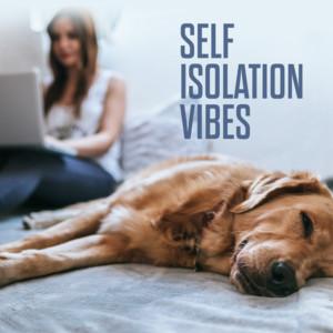 Self Isolation Vibes