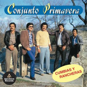 Cumbias y Rancheras album