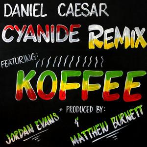 CYANIDE REMIX cover art
