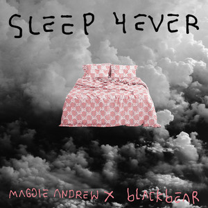 Sleep 4Ever (with blackbear)