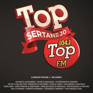 Top Sertanejo: Top 104,1 Fm Clássicos, Vol. 1