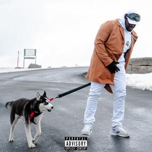 Husky cover art