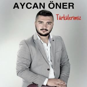 Türkülerimiz Albümü