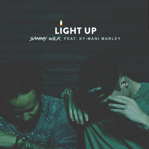 Light Up (feat. Ky-Mani Marley)