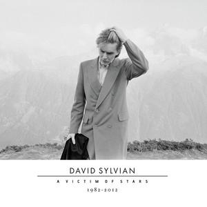 A Victim Of Stars 1982-2012 album