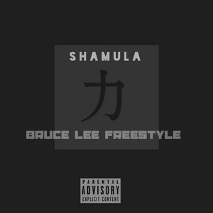 Bruce Lee Freestyle cover art