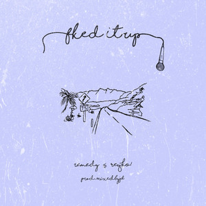 Fked It Up cover art