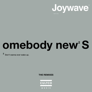 Somebody New (The Remixes)
