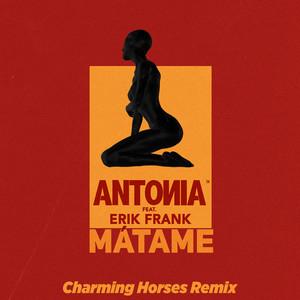 Mátame (feat. Erik Frank) [Charming Horses Remix]
