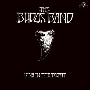 Haunted Sea by The Budos Band