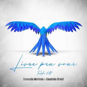 Livre Pra Voar - Radio Edit cover art
