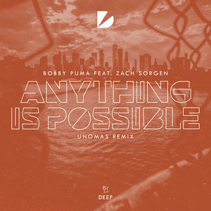 Anything Is Possible - UNOMAS Remix cover art