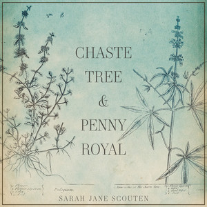 Chaste Tree and Pennyroyal