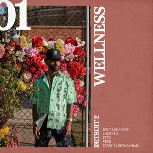 Detroit 2: Wellness