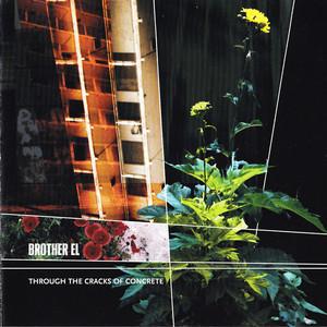 Through the Cracks of Concrete album