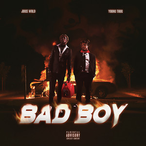 Bad Boy cover art