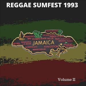 Reggae Sumfest: Jamaica 1993, Vol. II