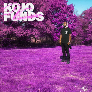 Vanessa by Kojo Funds