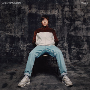 Louis Tomlinson – Defenceless (Studio Acapella)