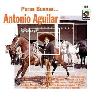 Puras Buenas - Antonio Aguilar