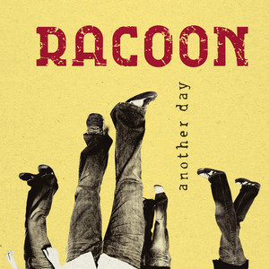 Another Day  - Racoon