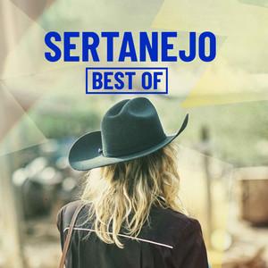 Sertanejo Best Of