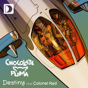 Chocolate Puma – Destiny (Acapella)
