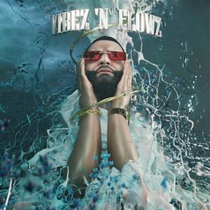 VIBEZ 'N' FLOWZ album