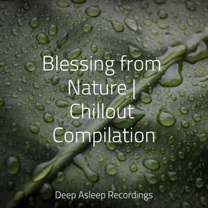 Blessing from Nature | Chillout Compilation