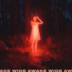 Wide Awake cover art