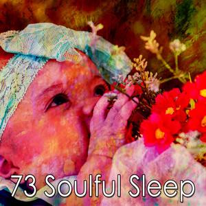 Natural Sleeping Ambience