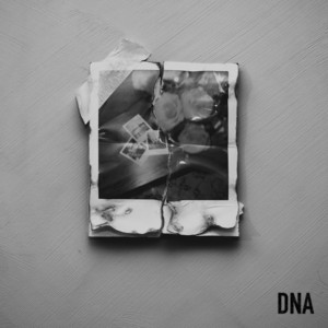 CAN'T TAKE IT - DNA