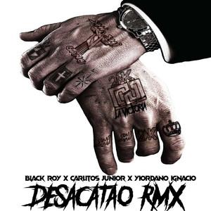 Desacatao (Remix)