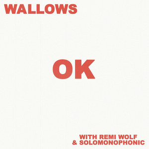 OK (with Remi Wolf & Solomonophonic)