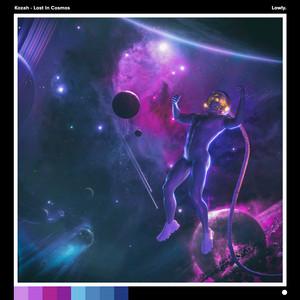 Lost in Cosmos