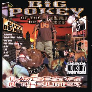 Trippin' Me Out by Big Pokey