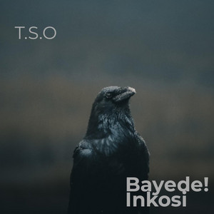 Fire by T.S.O