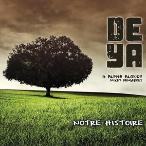 Notre Histoire (feat. Alpha Blondy)