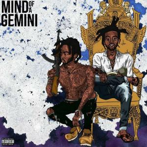Mind of a Gemini